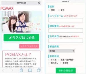 PCMAX1231